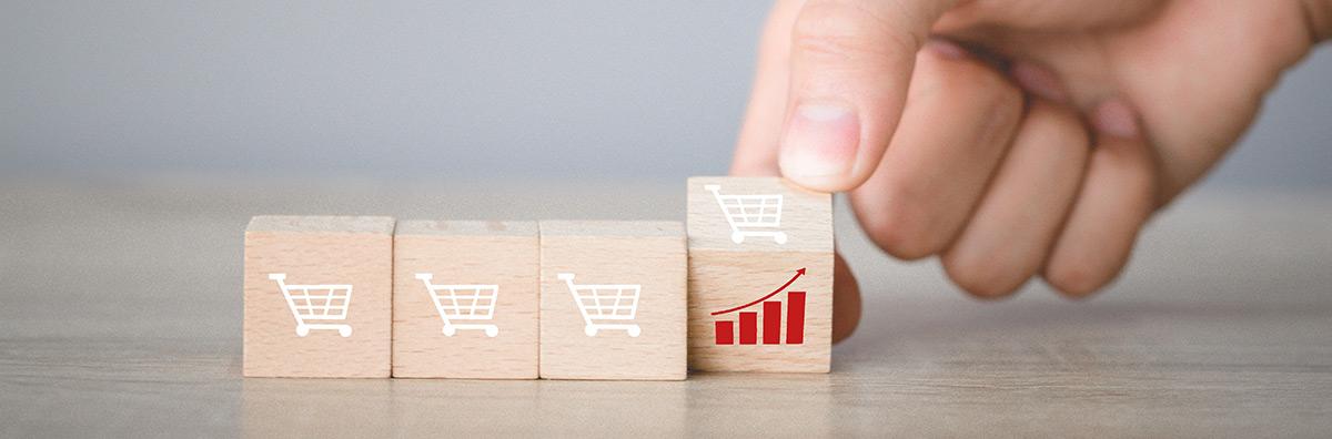 Technologie silników dedykowanych platformom e-commerce